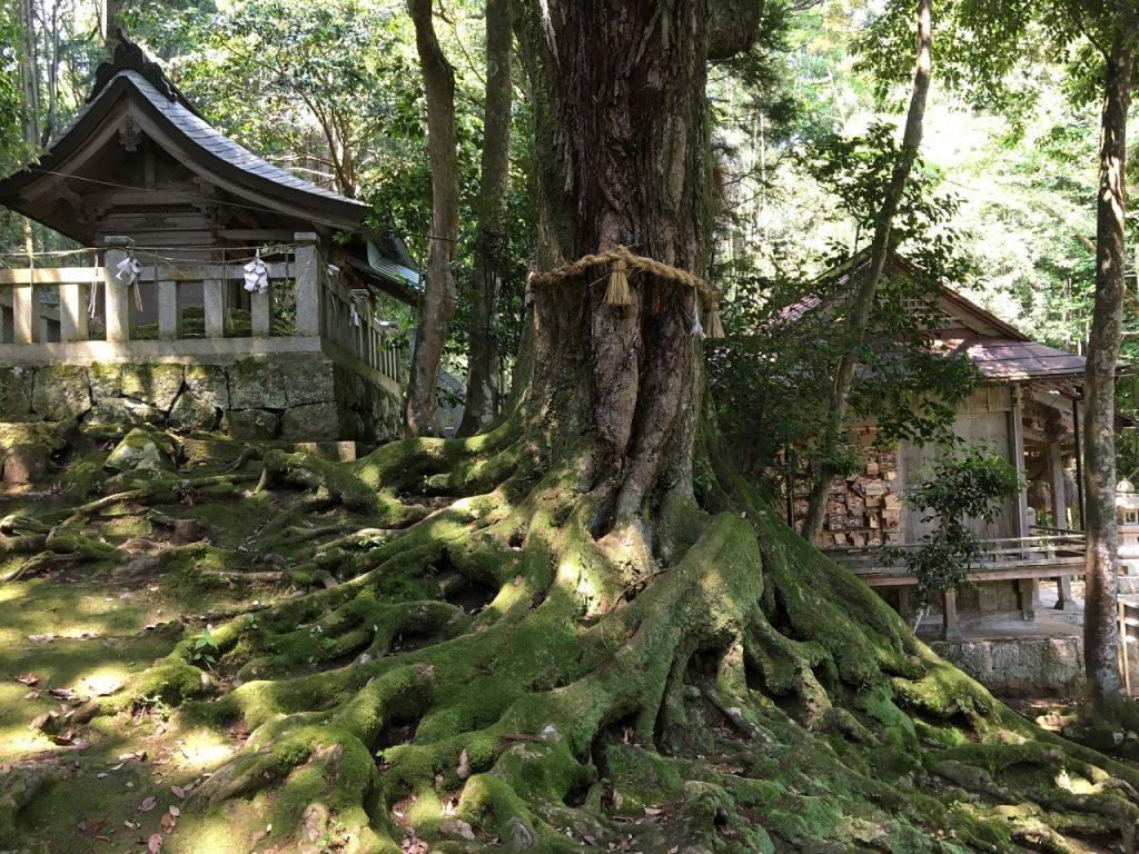 赤猪岩神社5
